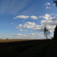 Граница Павловского парка