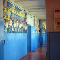 В школьном коридоре