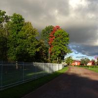 Фермская дорога