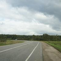 Дорога на Голыгино