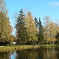 Средний Розовопавильонный пруд