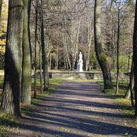 В Павловском парке