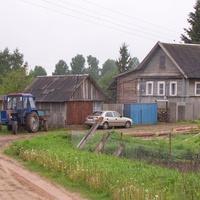 Лутовёнка, дом  Галышевой  Ефросиньи, май 2010 года.