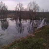 пруд зайчиков