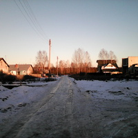 вся улица Молодежная