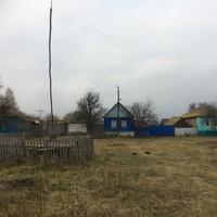 Курская область,Рыльский район,деревня Новая Николаевка