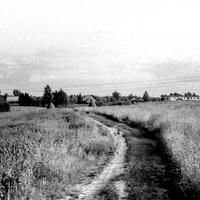 1988г. Дорога с Колпака в деревню.