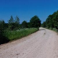 дорога из Лутовёнки  в  Падбережье, июнь 2006 года.