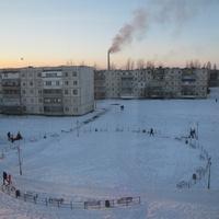 Терновка.Высадка елей на бульваре Героев Космоса.Декабрь 2016 года.