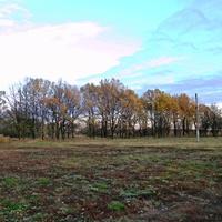 Природа села Бубново