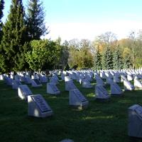 Військове кладовище.