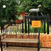 Иркутск. Памятник кошкам.