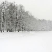 Екатерининский парк. Зима. Метель