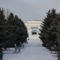 Аллея в парке Острвского. пос Глубокий.