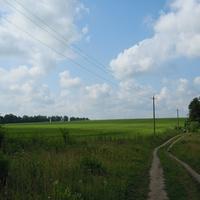 Дорога на дачний масив.