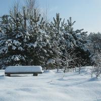 Хидры. Зима 2017