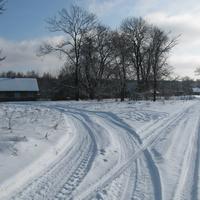 Хидры. Окраина. Зима 2017