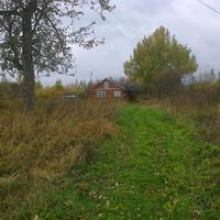 Долматово, осень 2014 года