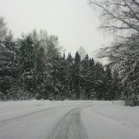 Заметает зима, заметает...