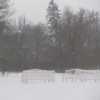 Усадебный парк при дворце в Дылицах