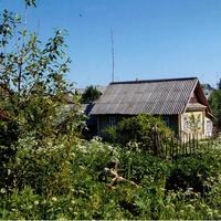 Лутовёнка, улица Подгорная, дом  Ванифатьевых.