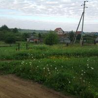 село  Яжелбицы, май 2010 года.