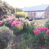 Дом в деревне Старо-Крапивенке (Шмыгаловке)