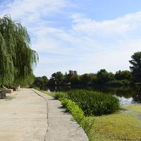 река Калитва около парка Маяковского