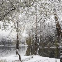 Безмятежная осень в окрестностях Новокузнецка