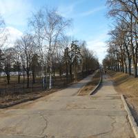 Парковая аллея вдоль озера.