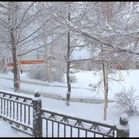 Последний снегопад зимы