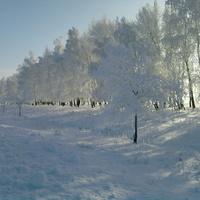 Зима 2010 в Новогольском