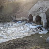 Сольцы, река Крутец