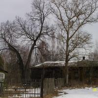 В центре села