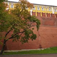 Кремлёвская стена в Александровском саду. Кремлёвский дворец