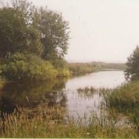 Пруд за селом Пустоша