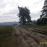 Временный трубопровод для тушения пожаров около бывшего пос. Соколья Грива