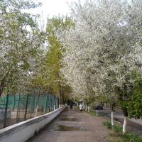город Измаил, улица Клушина