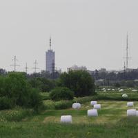 Поля на окраине Архангельска