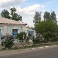 На улице Алексеева