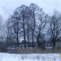 На окраине деревни Лемёшино со стороны Лемёшинского озера