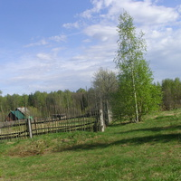 В деревне Турово