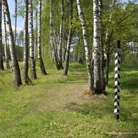 Исторический участок Владимирского тракта около пос. Пекша