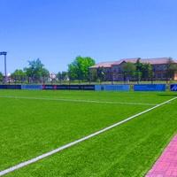 Стадион сельской академии