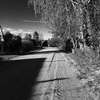 Дорога у дома. Зубатово.