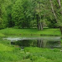 Верхний Розовопавильонный пруд