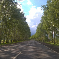 Дорога Юрга - Томск