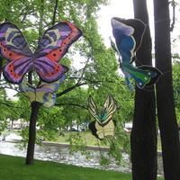 Проект «Эффект бабочки».