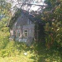 деревня Ломово 2017г