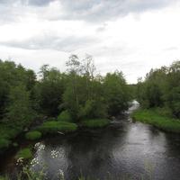 Сологубовка, река Мга